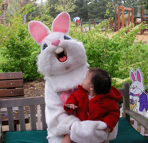 Easter Bunny Breast Picture photo 6