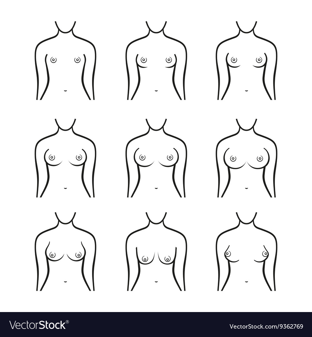 Different Types Of Tits photo 13