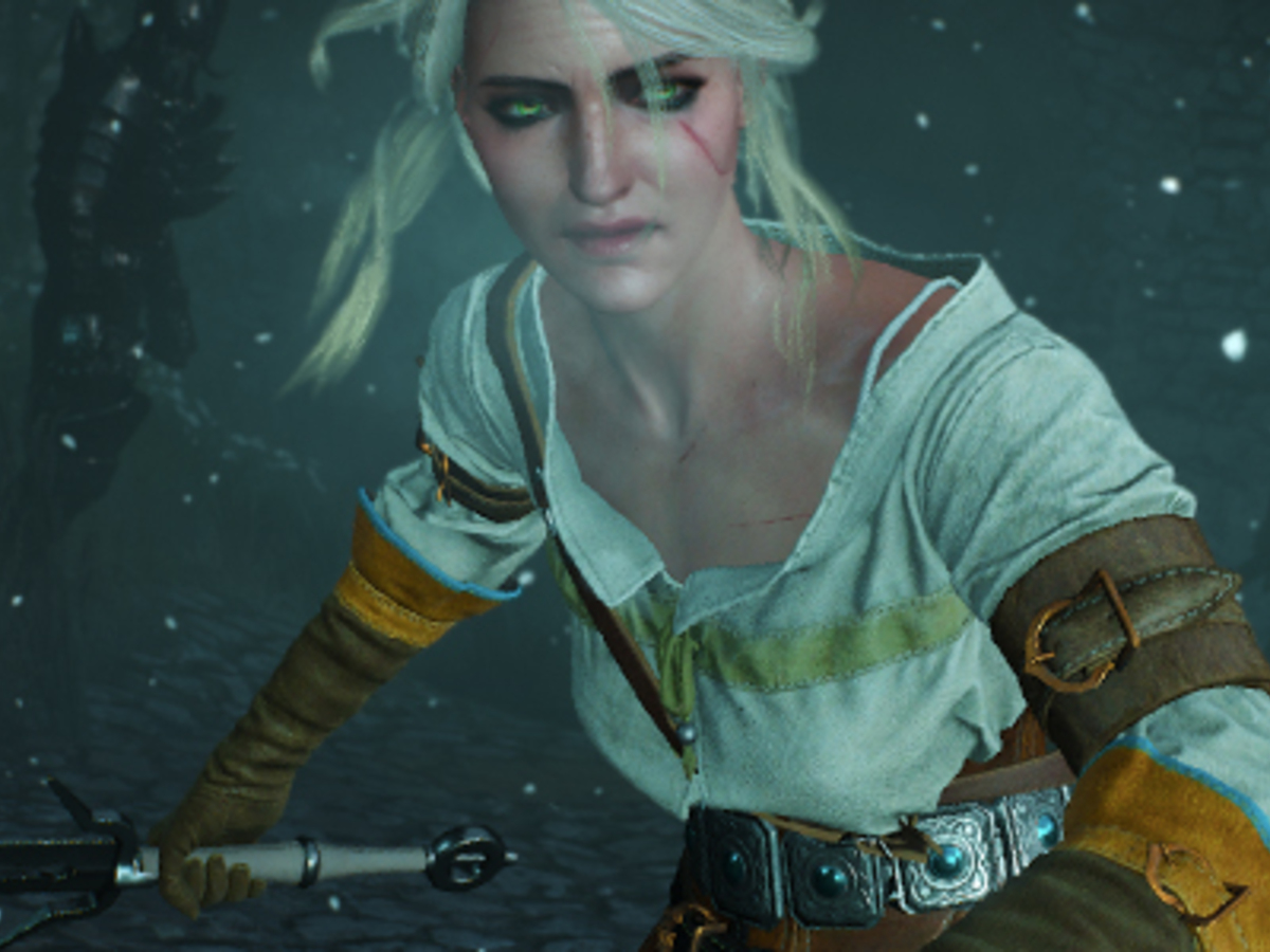 The Witcher 3 Boobs photo 28