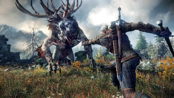 The Witcher 3 Boobs photo 20