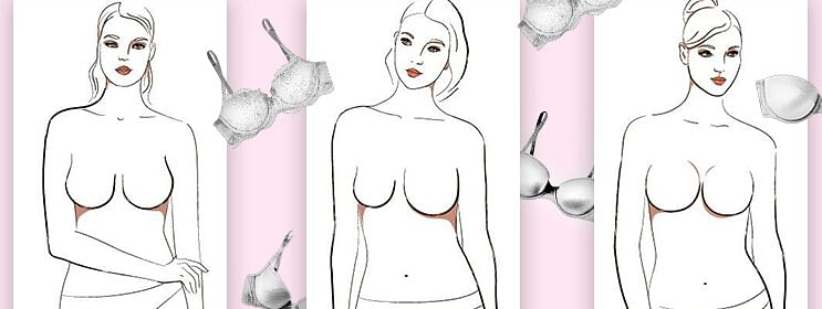 Different Types Of Tits photo 6