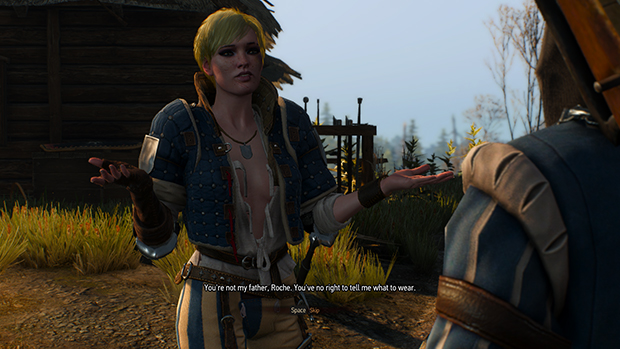 The Witcher 3 Boobs photo 30