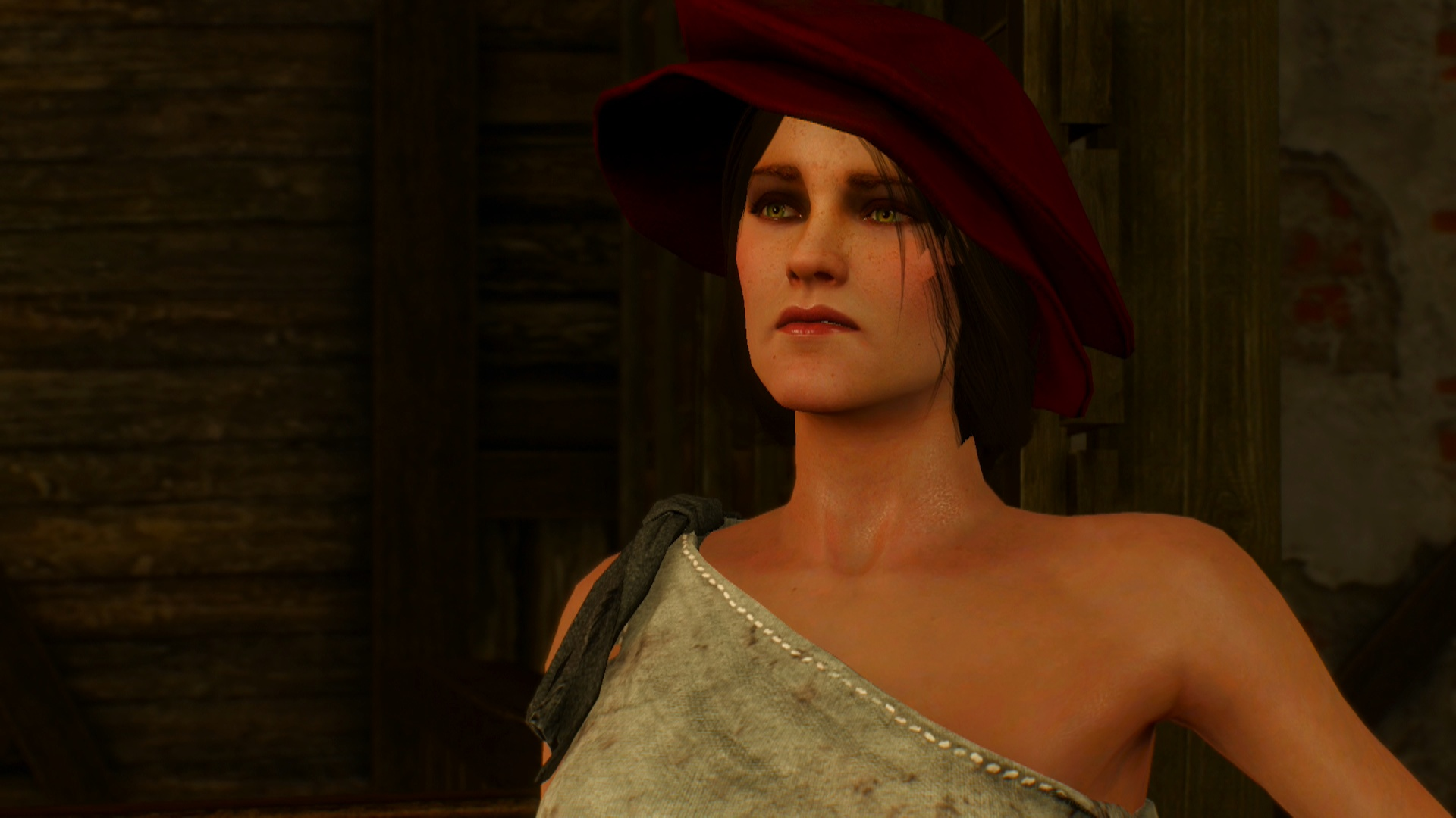 The Witcher 3 Boobs photo 27