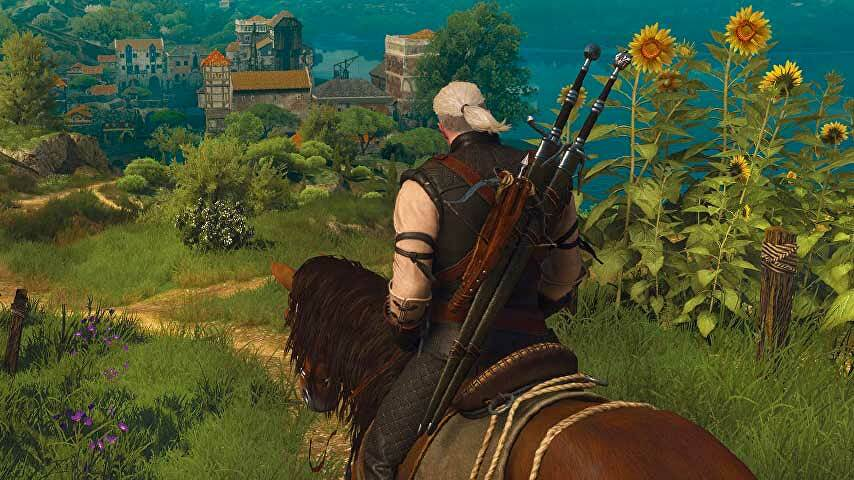 The Witcher 3 Boobs photo 11