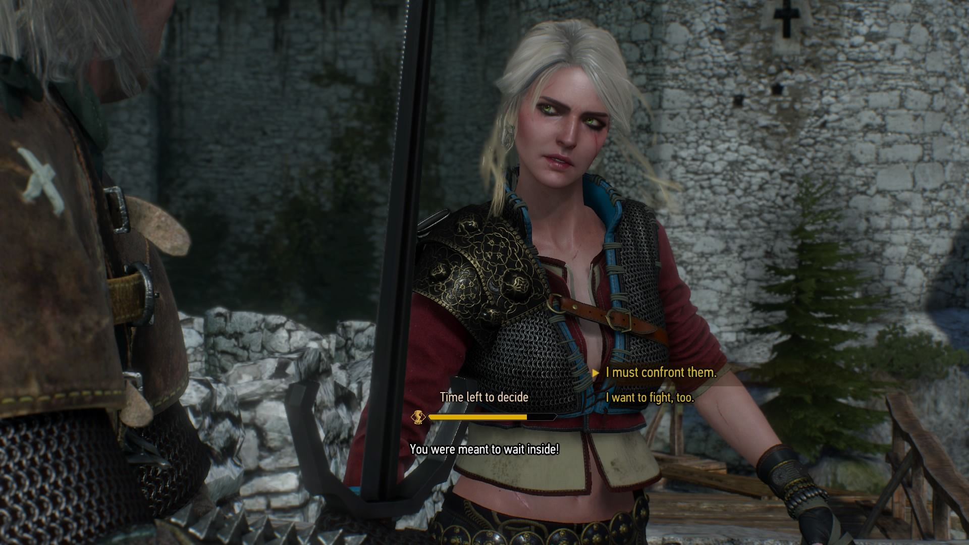 The Witcher 3 Boobs photo 25